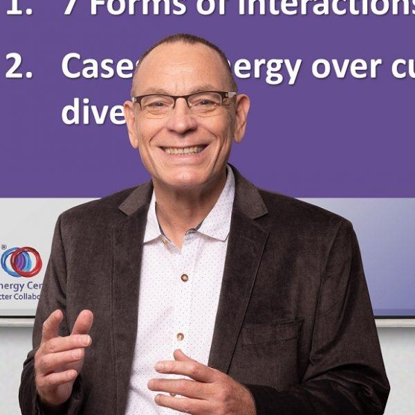"""ד""""ר רמי בן-ישי. סינרגיה ארגונית, איך להשיג יותר מהמשאבים הקיימים."""